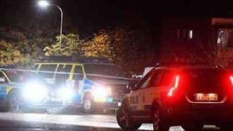 Gunman Opens Fire in Sweden,Several Injured